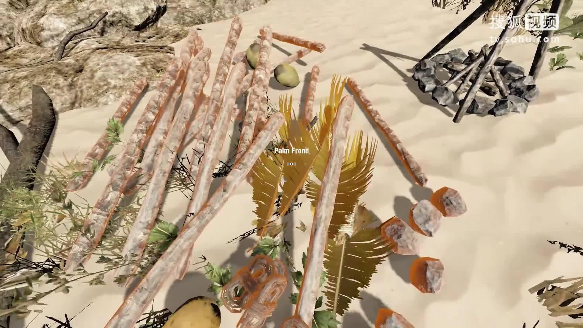 【独播】【荒岛求生】小耶-流浪在孤岛上 第3集 我开始做影片的原因是