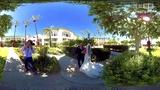 VR婚礼360度全景观看 婚礼现场![2]