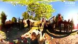 360度全景视频 动物园里的兔子